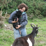 Lesley Jones working with the animals at Ballycreen